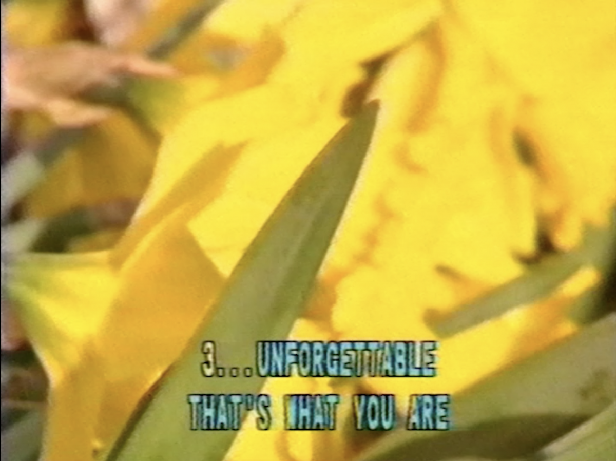 The Unforgettable City Song1