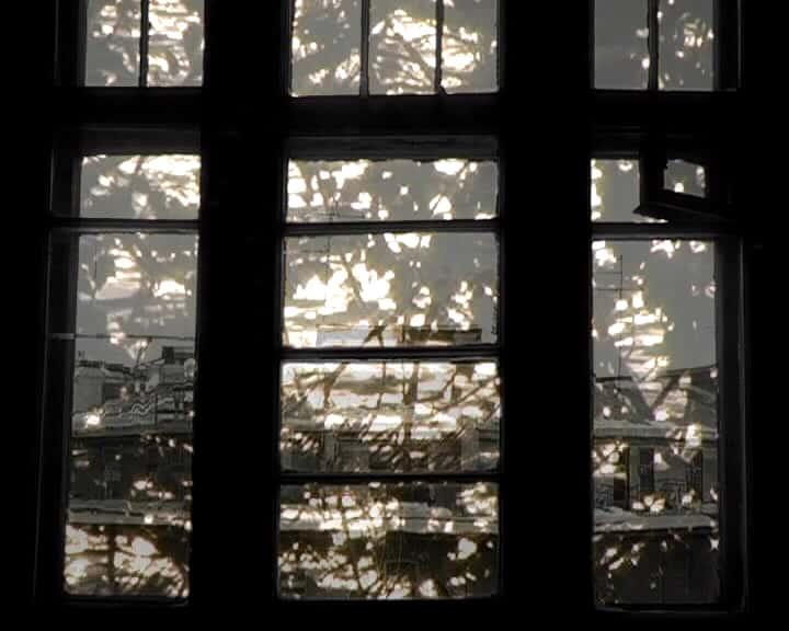Belova - Window 7